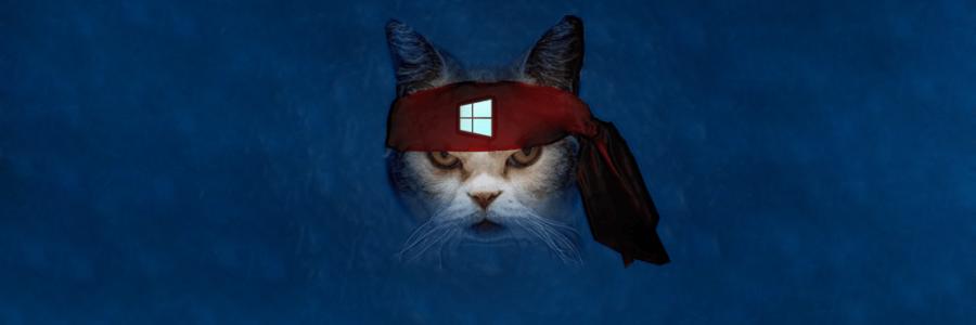 .NET Framework 3.5 e Windows 10, come risolvere l'errore 0x800F081F