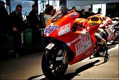 Ducati & RedBull in pista ...
