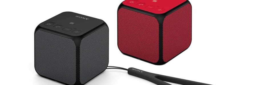 Sony SRS-X11: Speaker wireless portatile con Bluetooth 1