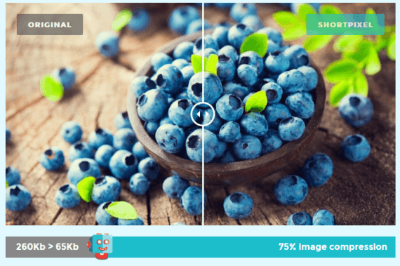 WordPress: ShortPixel Image Optimizer
